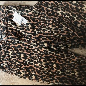Leopard print slight flare pants BDG Sz 25
